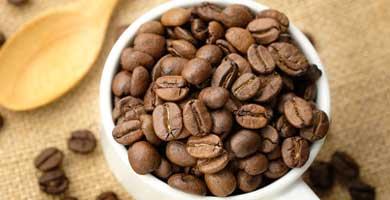 vida divina cafe sculpt